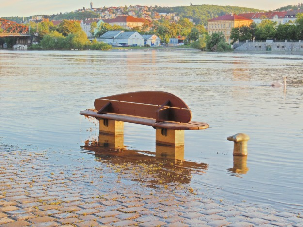 A flooded bench